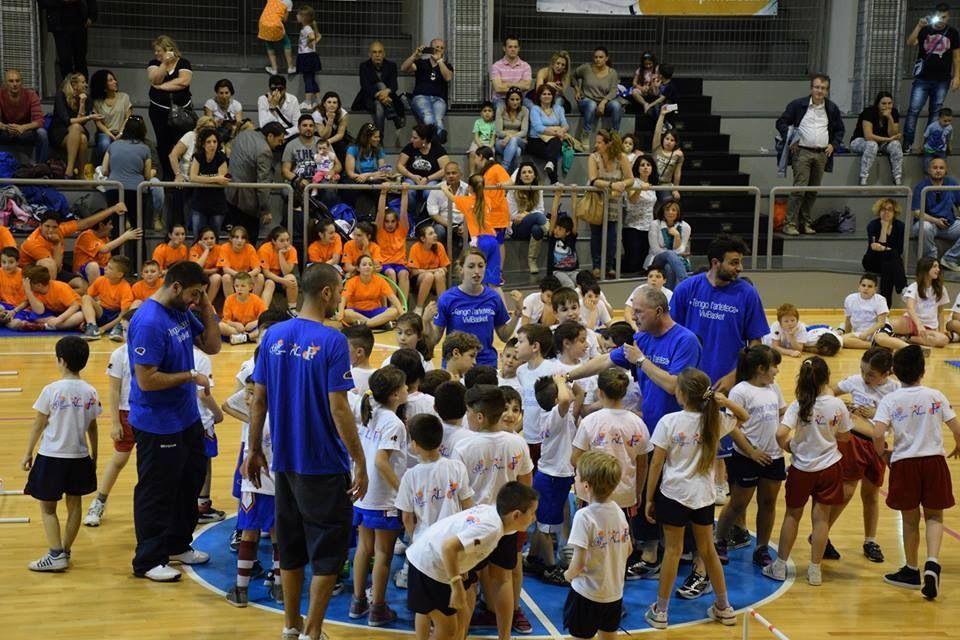 Arteteca Vivi Basket